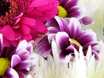 Trends in Floral Supply Chain