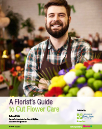 IFE16_floristreport_cover